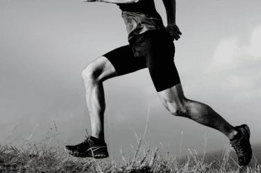 Vastus Lateralis – Anatomy, Purpose, Treatment + Injury Prevention